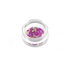Hvězdičky fialové